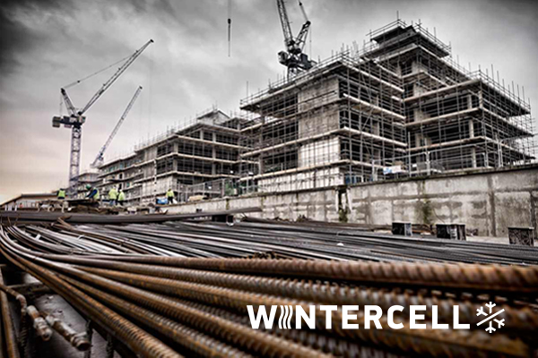 Wintercell branding és design